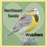 Northeast Swale Watchers